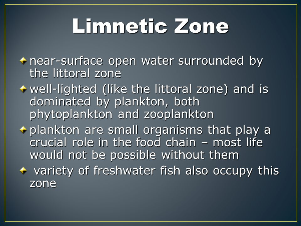 Limnetic Zone near-surface open water surrounded by the littoral zone