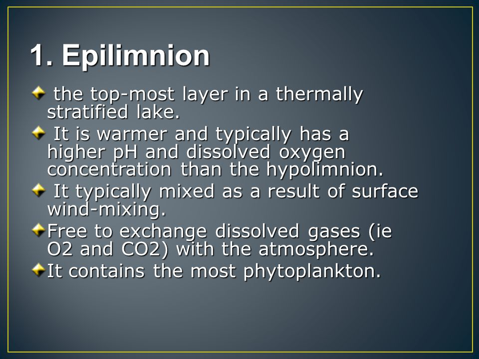 1. Epilimnion the top-most layer in a thermally stratified lake.