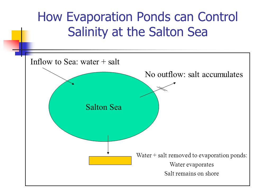 How Evaporation Ponds can Control Salinity at the Salton Sea