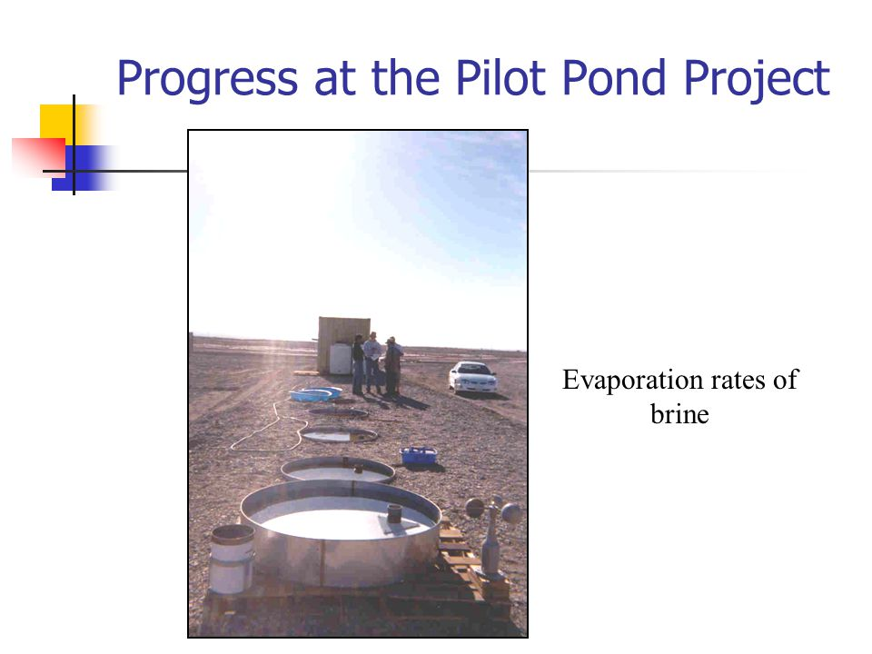 Progress at the Pilot Pond Project