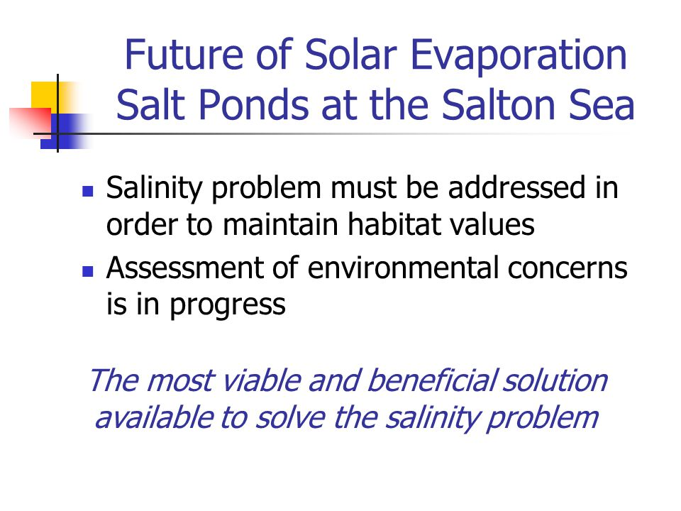 Future of Solar Evaporation Salt Ponds at the Salton Sea