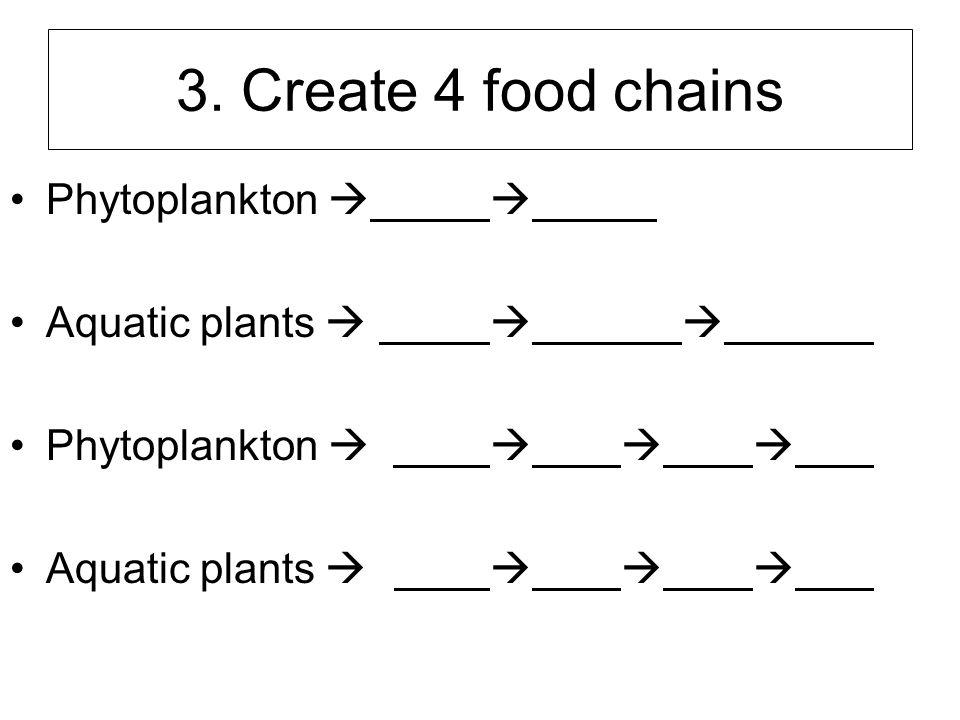 3. Create 4 food chains Phytoplankton   Aquatic plants   