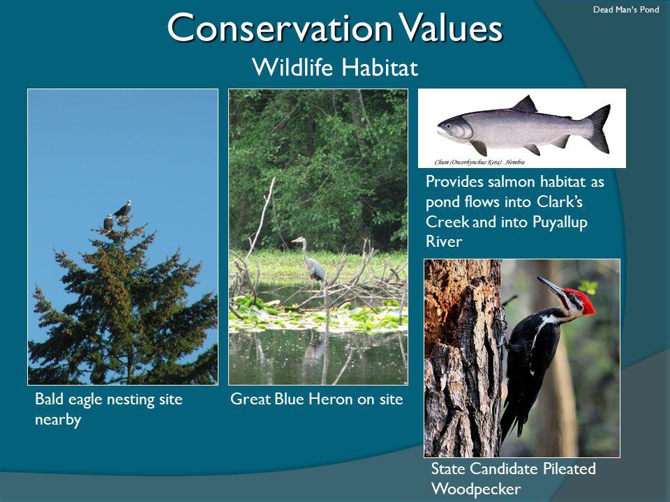 Conservation Values Wildlife Habitat