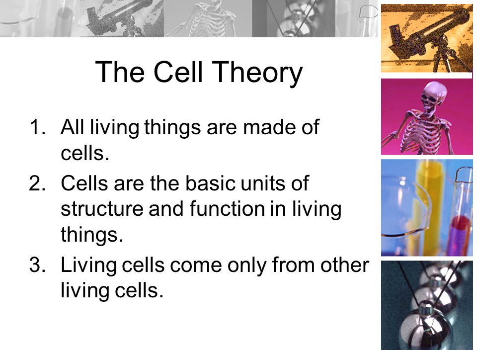 The Cell Theory All living things are made of cells.