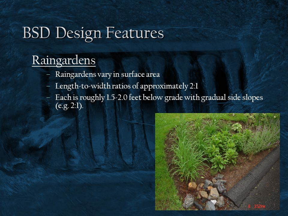 BSD Design Features Raingardens Raingardens vary in surface area