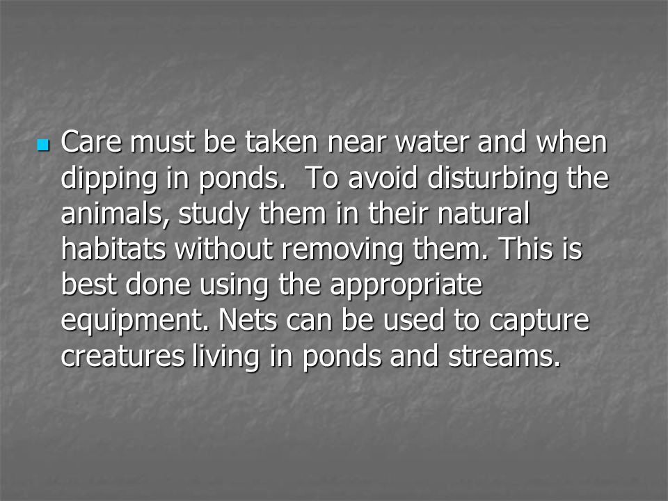 Care must be taken near water and when dipping in ponds