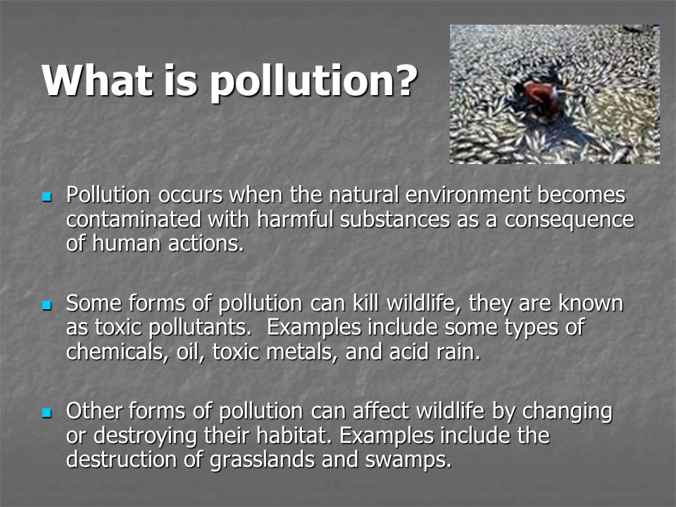 What is pollution Pollution occurs when the natural environment becomes contaminated with harmful substances as a consequence of human actions.