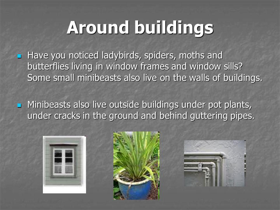 Around buildings