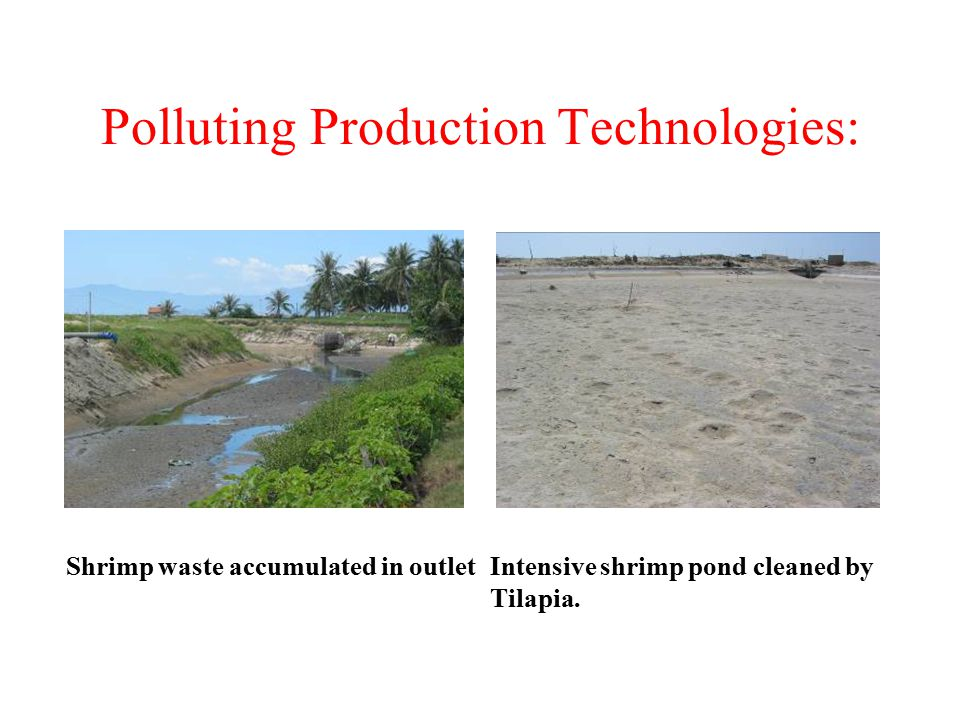 Polluting Production Technologies: