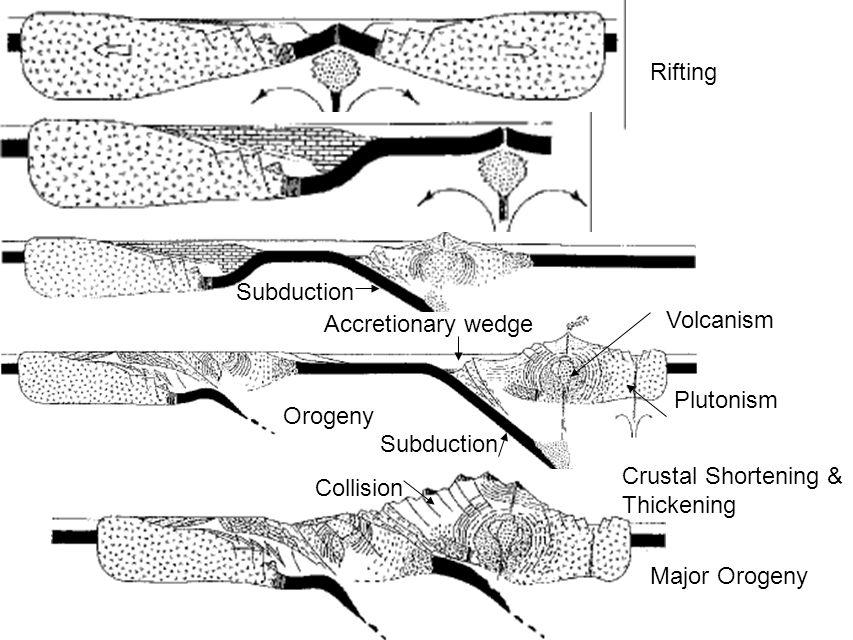 Rifting Subduction. Accretionary wedge. Volcanism. Plutonism. Orogeny. Subduction. Crustal Shortening &