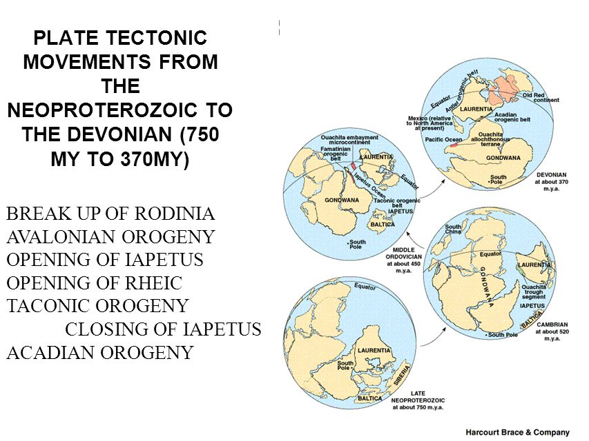 PLATE TECTONIC MOVEMENTS FROM THE NEOPROTEROZOIC TO THE DEVONIAN (750 MY TO 370MY)