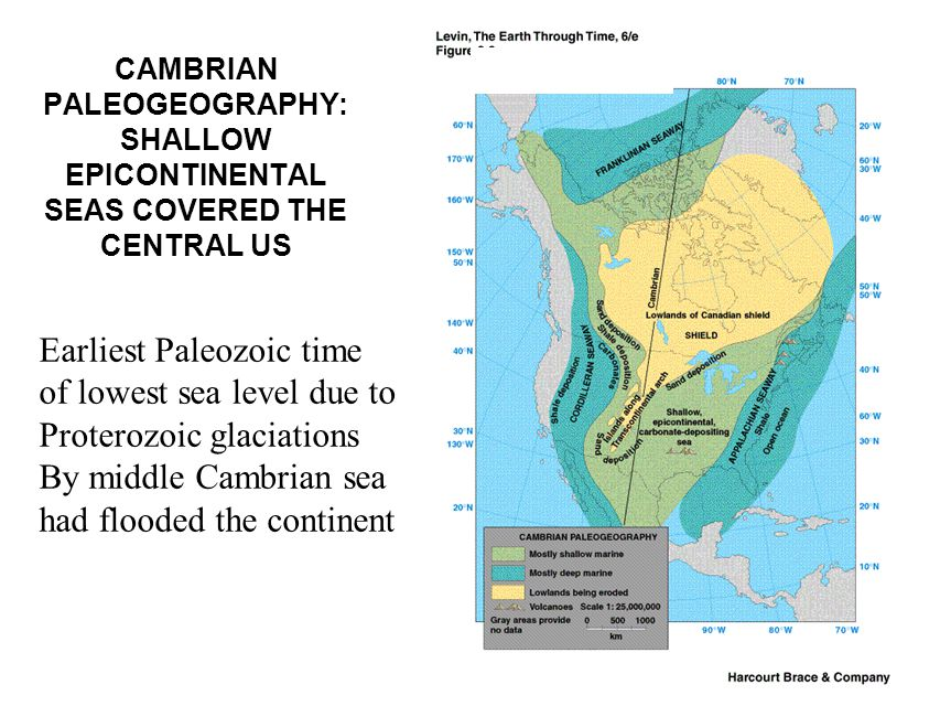 Earliest Paleozoic time of lowest sea level due to