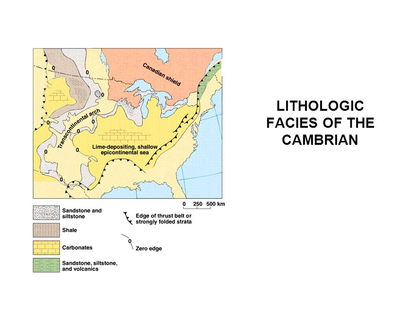 LITHOLOGIC FACIES OF THE CAMBRIAN