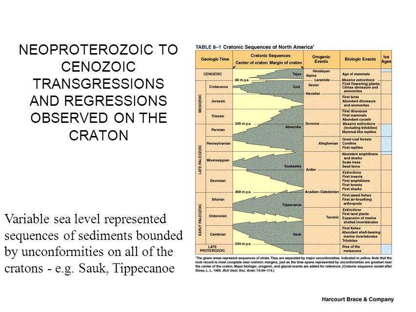 NEOPROTEROZOIC TO CENOZOIC TRANSGRESSIONS AND REGRESSIONS OBSERVED ON THE CRATON