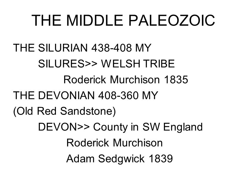 THE MIDDLE PALEOZOIC THE SILURIAN 438-408 MY