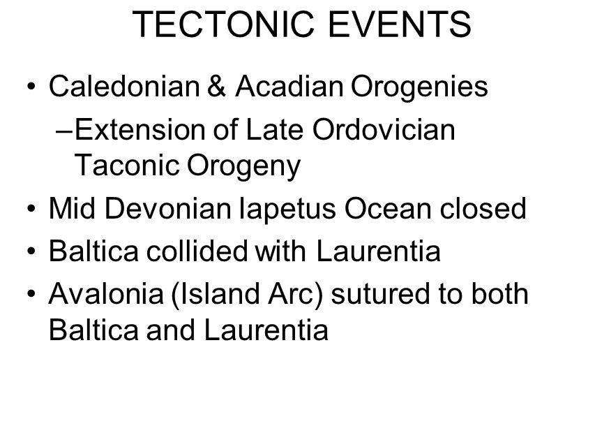 TECTONIC EVENTS Caledonian & Acadian Orogenies
