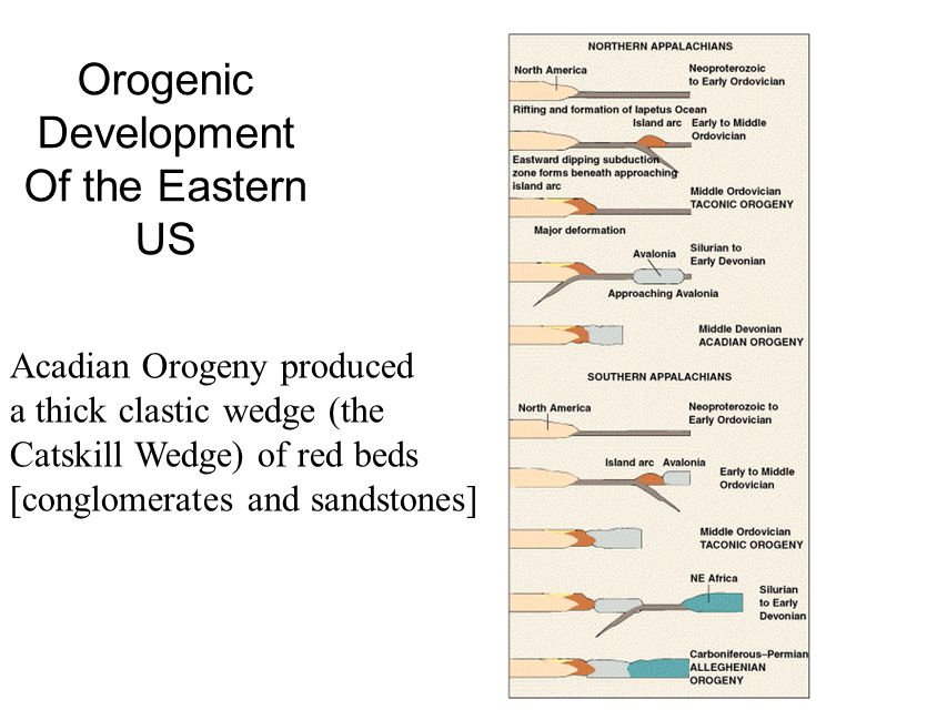 Orogenic Development Of the Eastern US