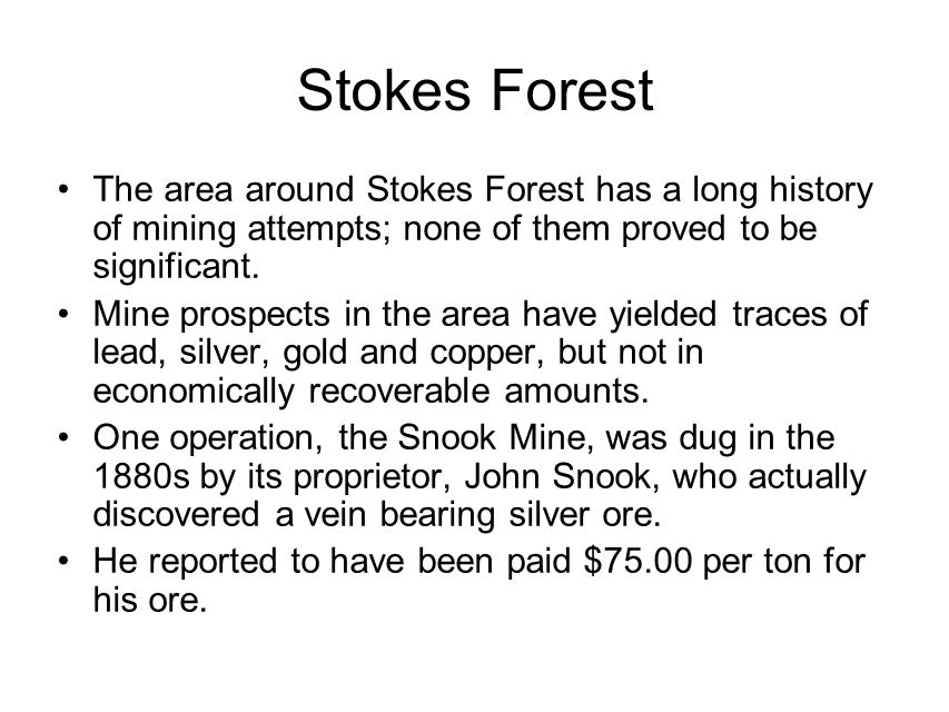 Stokes Forest The area around Stokes Forest has a long history of mining attempts; none of them proved to be significant.