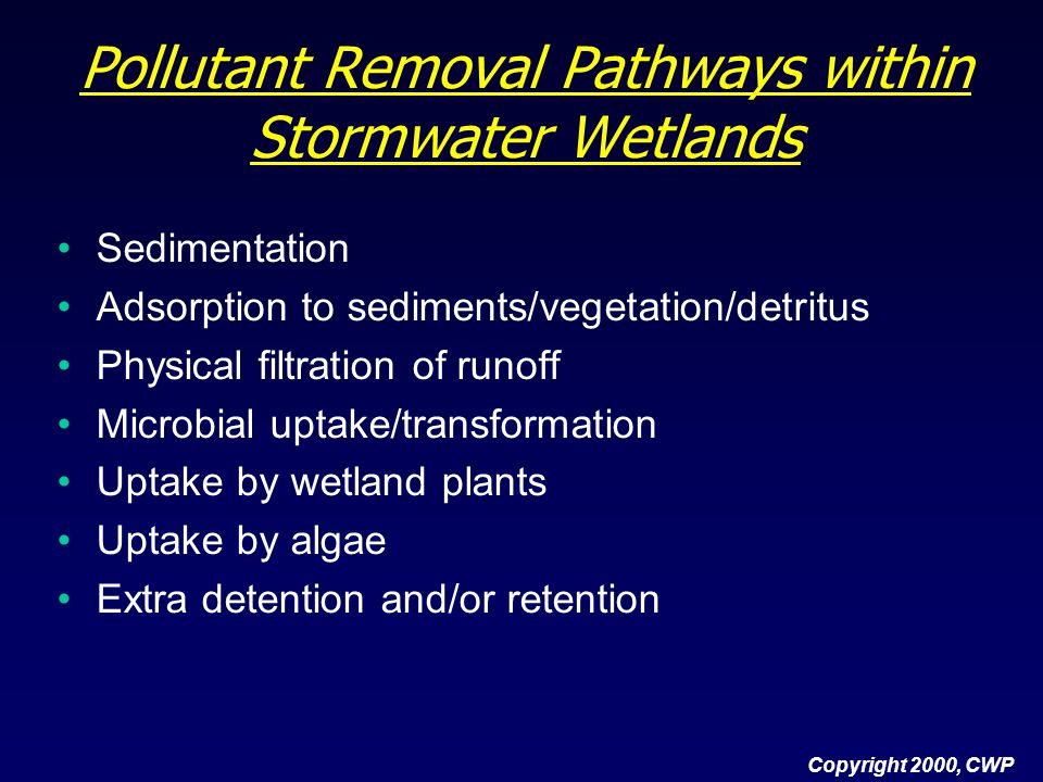 Pollutant Removal Pathways within Stormwater Wetlands
