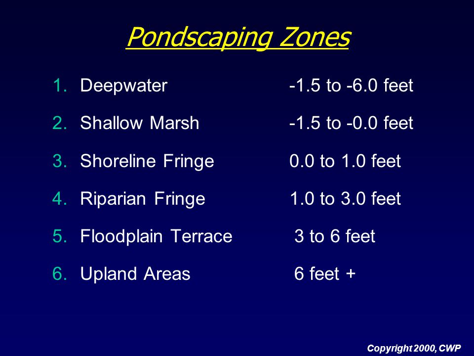 Pondscaping Zones Deepwater -1.5 to -6.0 feet