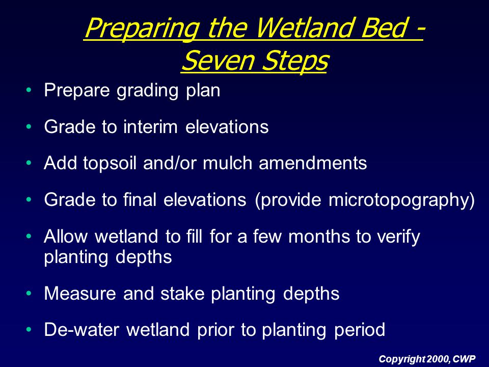 Preparing the Wetland Bed - Seven Steps