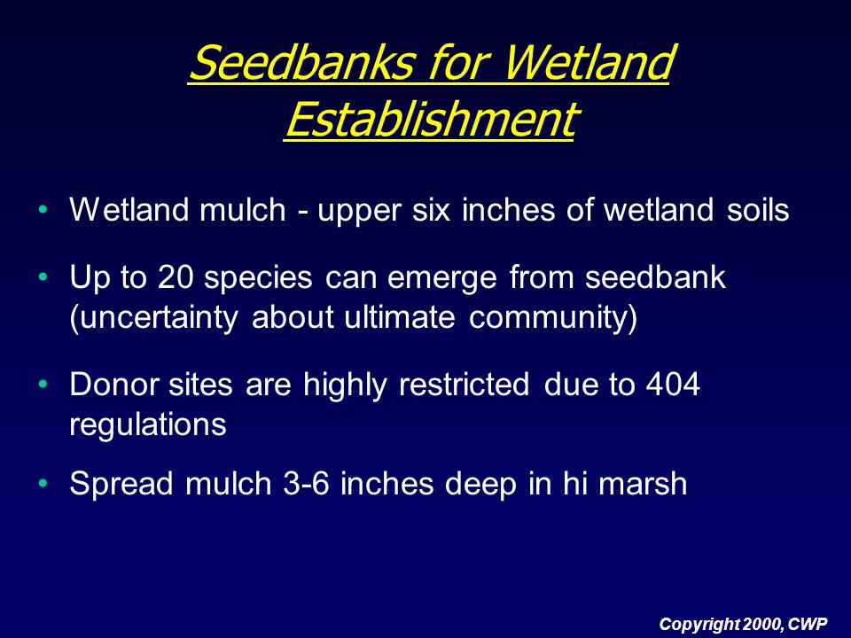 Seedbanks for Wetland Establishment