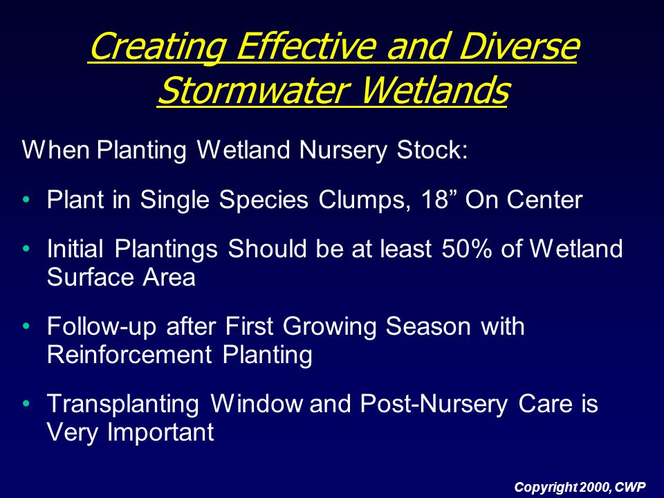 Creating Effective and Diverse Stormwater Wetlands