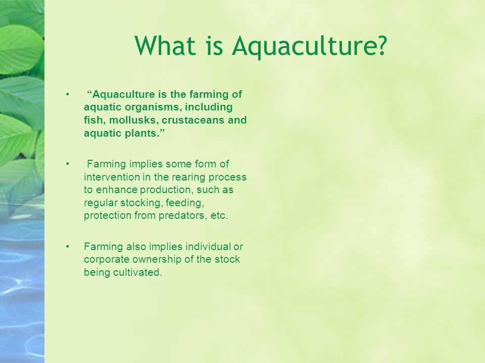 What is Aquaculture Aquaculture is the farming of aquatic organisms, including fish, mollusks, crustaceans and aquatic plants.