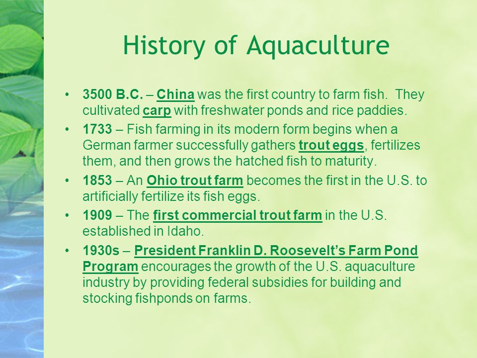 History of Aquaculture