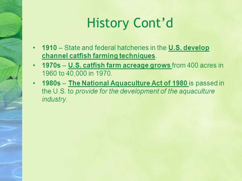 History Cont'd 1910 – State and federal hatcheries in the U.S. develop channel catfish farming techniques.