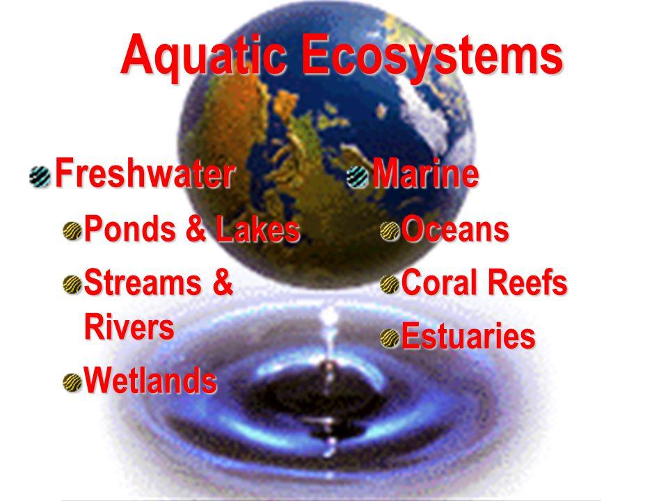 Aquatic Ecosystems Freshwater Marine Ponds & Lakes Streams & Rivers