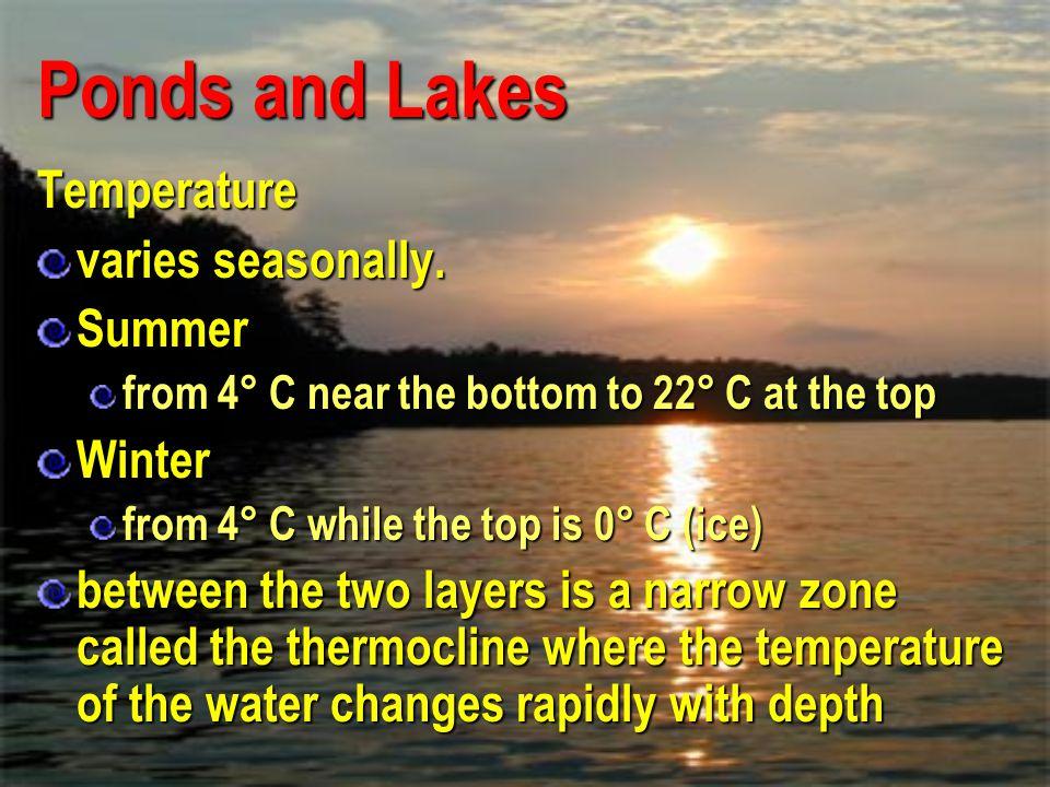 Ponds and Lakes Temperature varies seasonally. Summer Winter