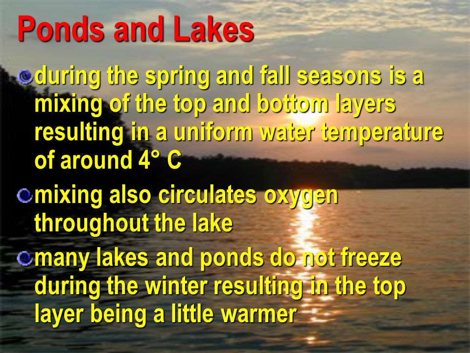 Ponds and Lakes during the spring and fall seasons is a mixing of the top and bottom layers resulting in a uniform water temperature of around 4° C.