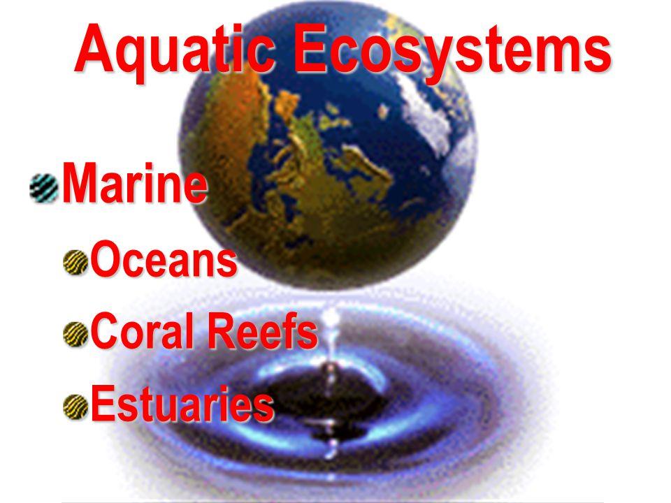 Aquatic Ecosystems Marine Oceans Coral Reefs Estuaries