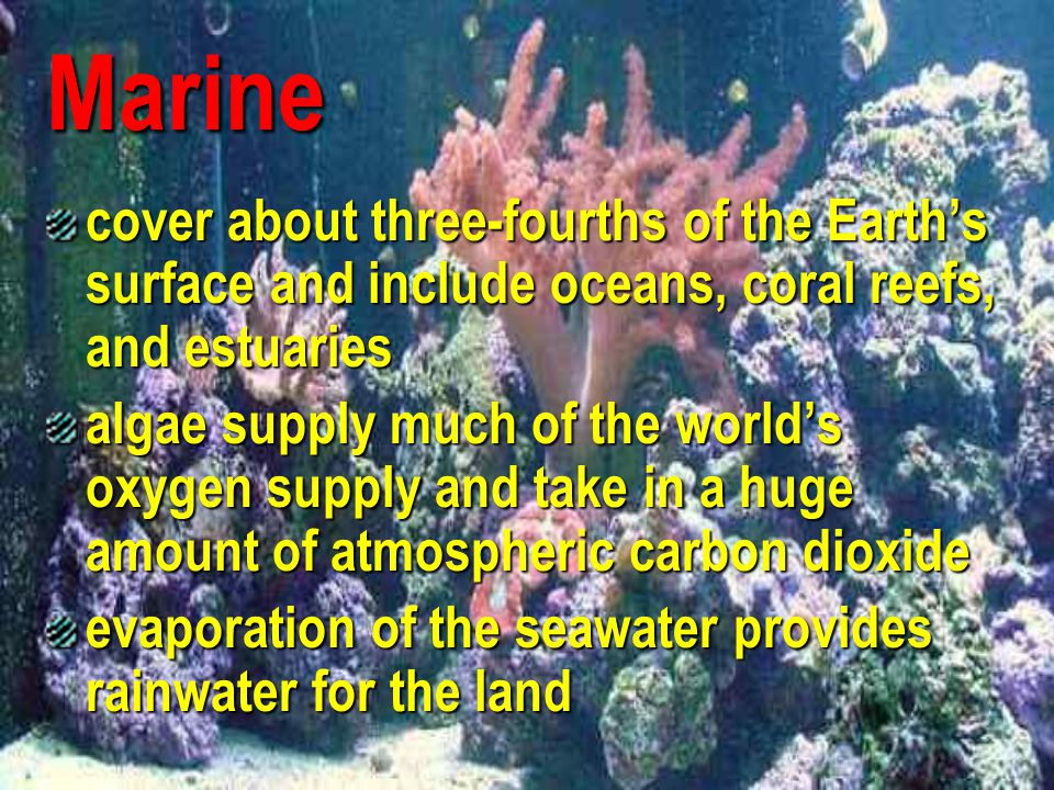 Marine cover about three-fourths of the Earth's surface and include oceans, coral reefs, and estuaries.
