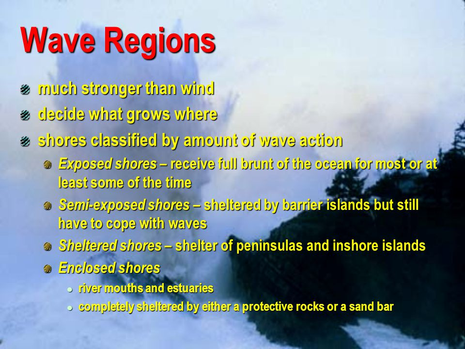 Wave Regions much stronger than wind decide what grows where