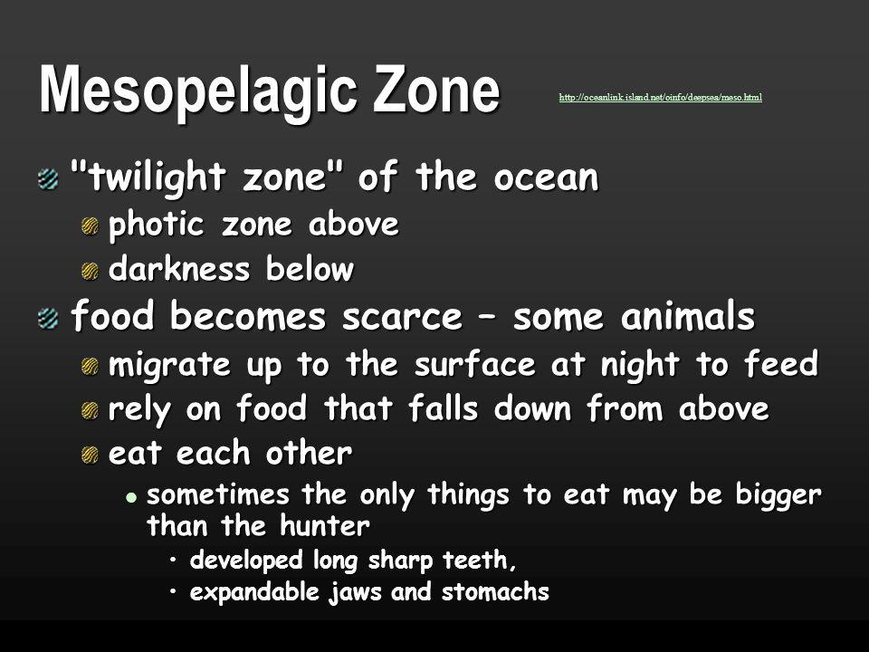 Mesopelagic Zone twilight zone of the ocean