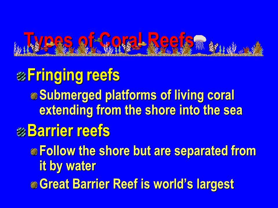 Types of Coral Reefs Fringing reefs Barrier reefs