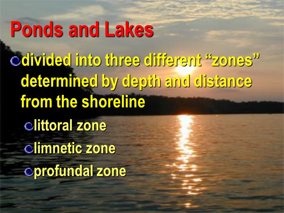 Ponds and Lakes divided into three different zones determined by depth and distance from the shoreline.