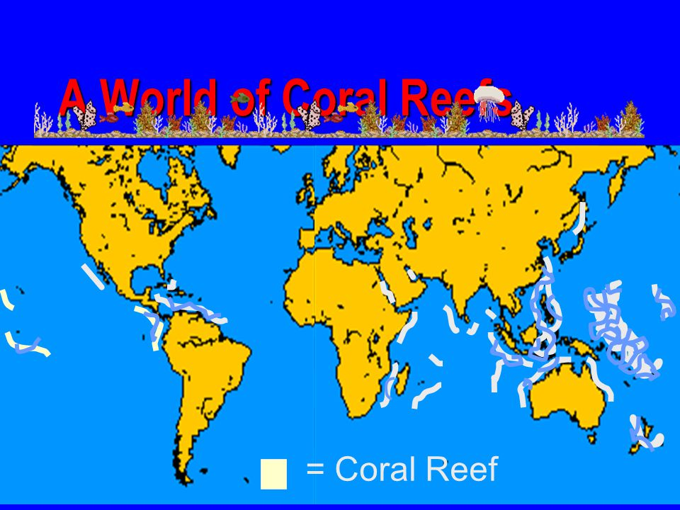 A World of Coral Reefs = Coral Reef