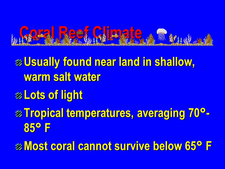 Coral Reef Climate Usually found near land in shallow, warm salt water
