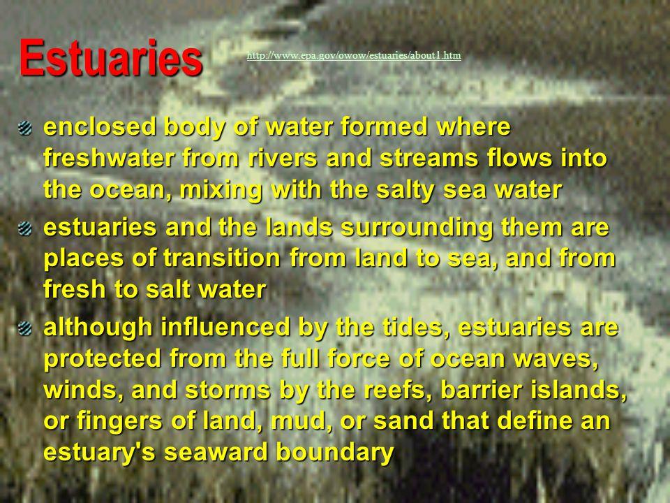 Estuaries http://www.epa.gov/owow/estuaries/about1.htm.