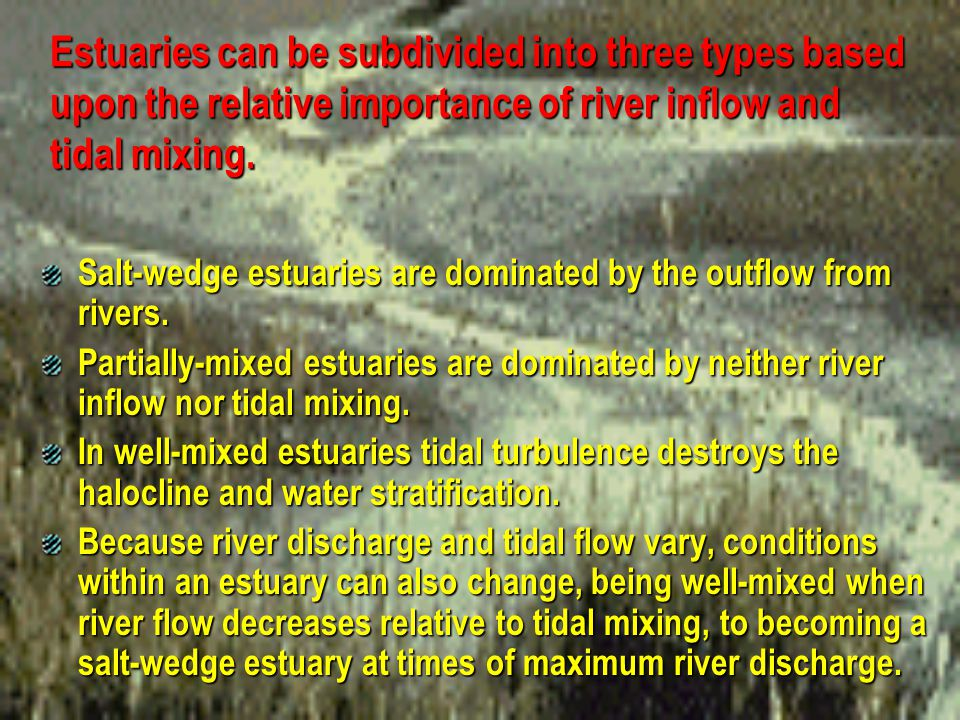 Estuaries can be subdivided into three types based upon the relative importance of river inflow and tidal mixing.