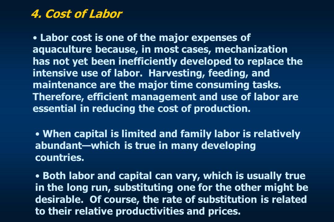 4. Cost of Labor