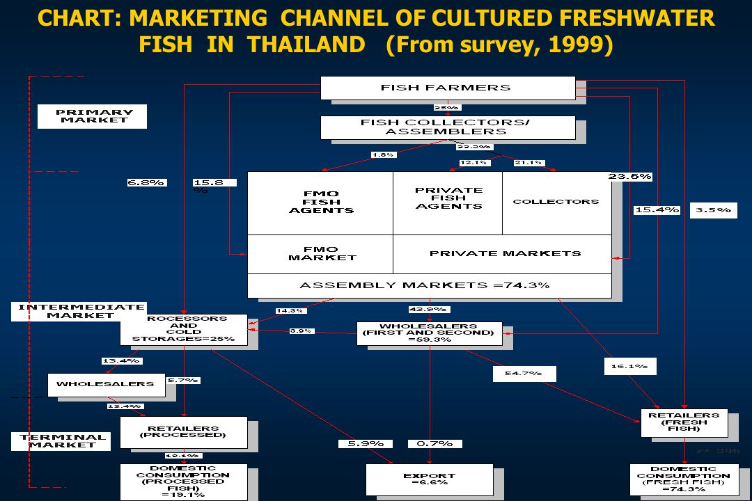 CHART: MARKETING CHANNEL OF CULTURED FRESHWATER FISH IN THAILAND (From survey, 1999)