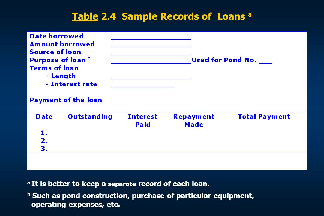Table 2.4 Sample Records of Loans a