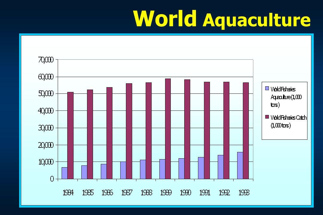 World Aquaculture