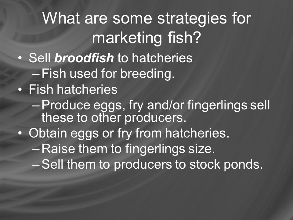 What are some strategies for marketing fish
