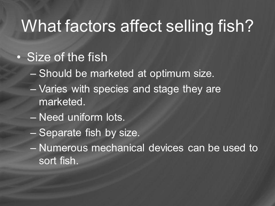 What factors affect selling fish