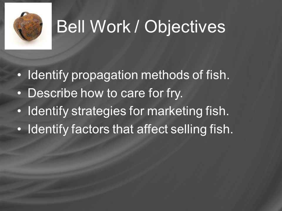 Bell Work / Objectives Identify propagation methods of fish.
